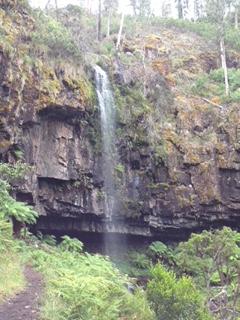 Bindaree Falls 1